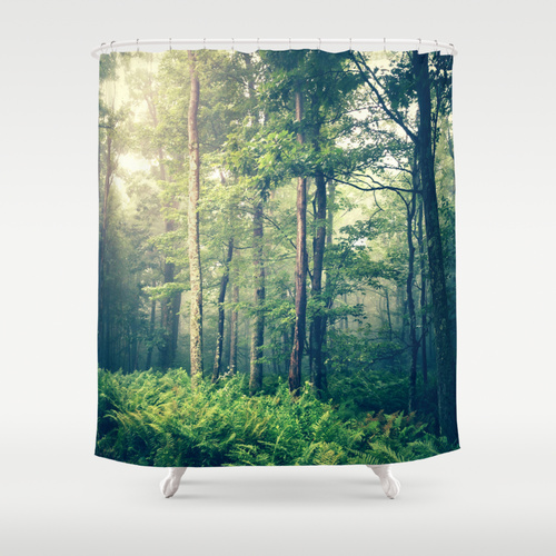 Olivia Joy St. Claire for Society 6  shower curtain , $68
