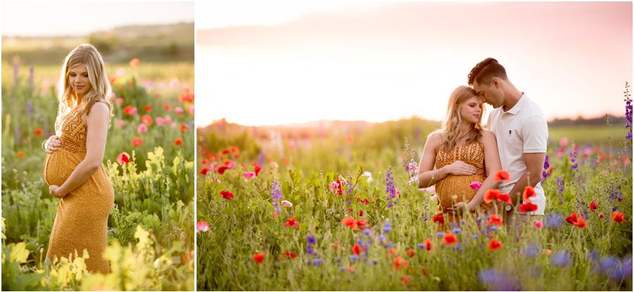 Blog Collage-1498581229352.jpg
