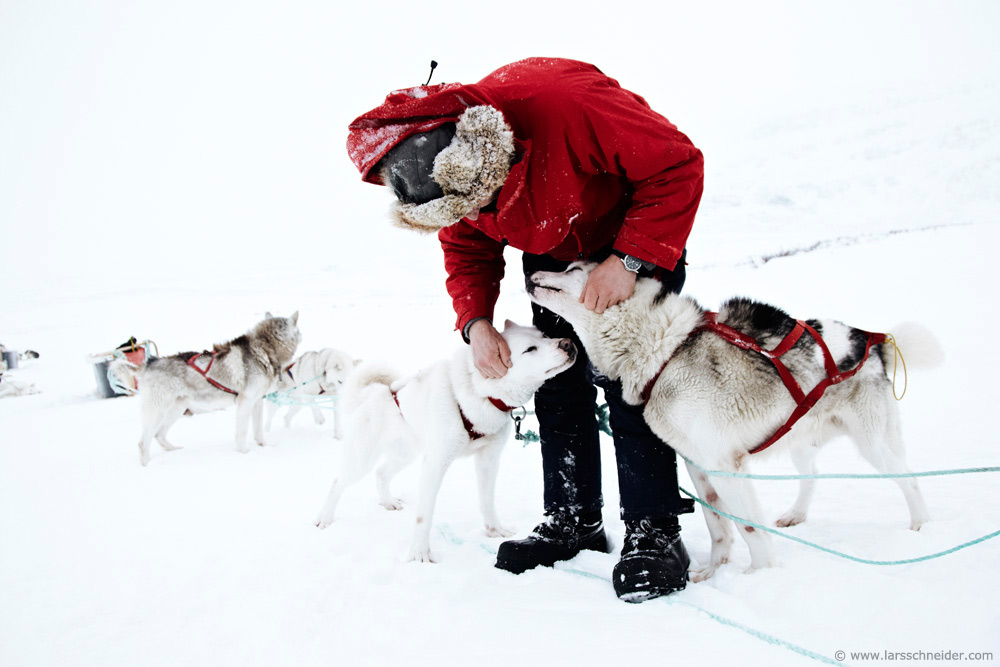 dogsledding-photo-expedition-Norway-13.jpg
