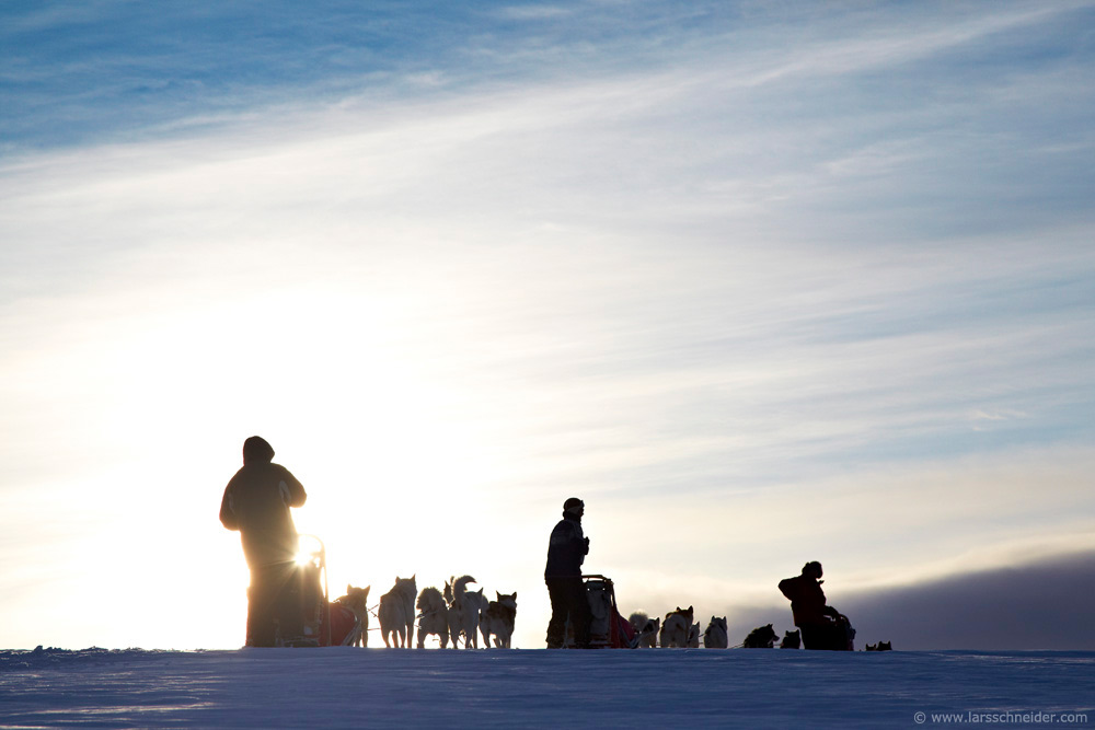 dogsledding-photo-expedition-Norway-16.jpg