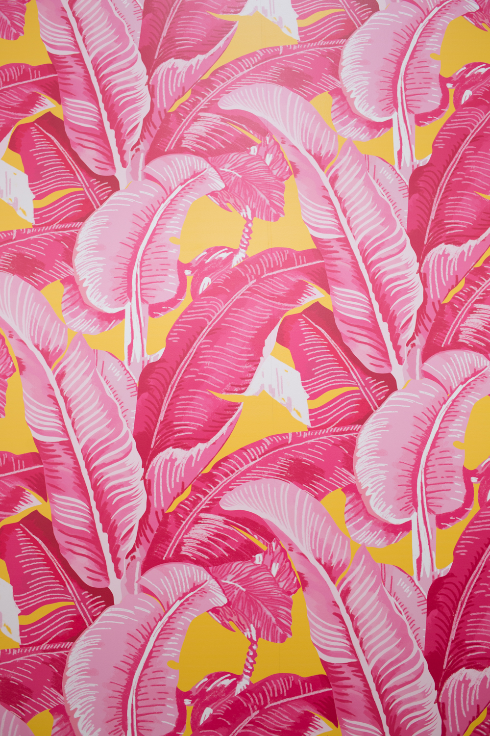 The prettiest palm print wallpaper I've ever seen. And I just found out that my insta-friend @space.ram designed it so I love it even more!