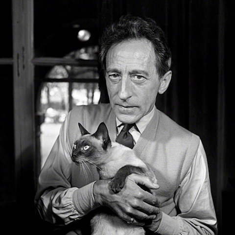 Jean Cocteau in the 1940's. Besides being an Actor, Playwright, Designer, Director and Artist, Cocteau was known for 2 things; his Siamese cat and the trinity rings he wore on his pinky.