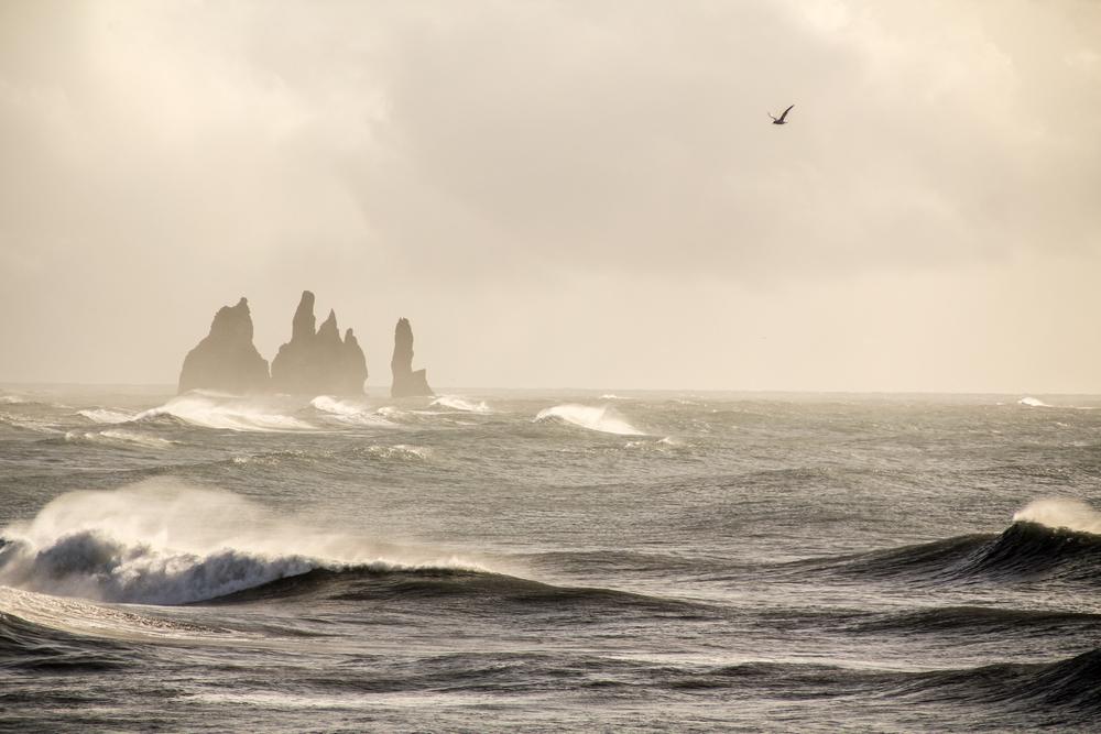 iceland-9464.jpg