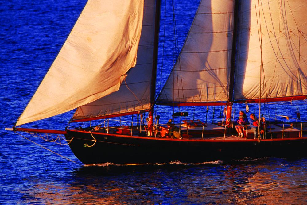 David Half Boat.jpg