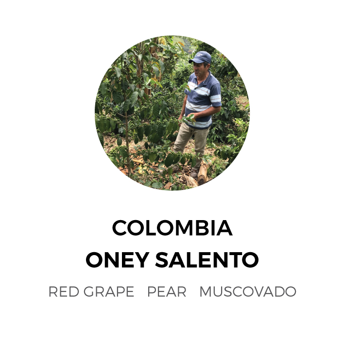 ColombiaOneySalento.jpg