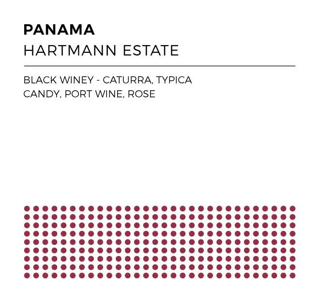 PanamaHartmann_WEB.jpg