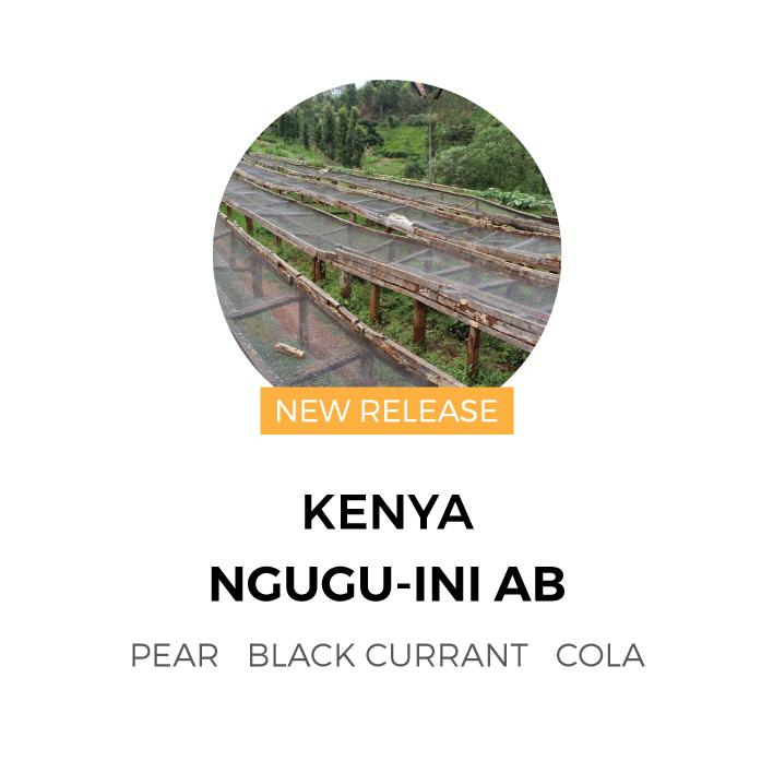Kenya-NguguIni-New-Release.jpg