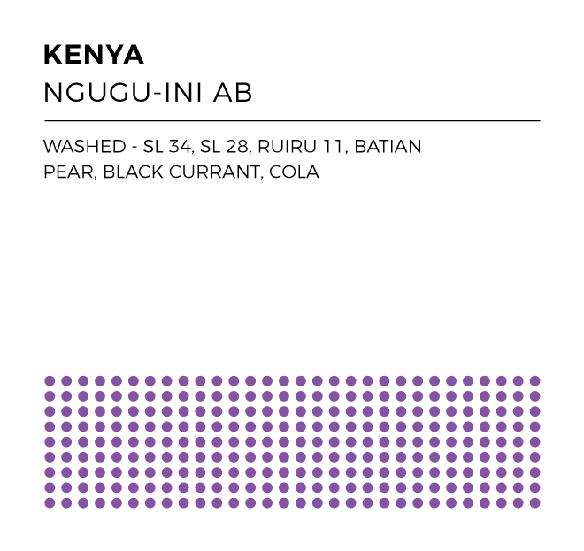 KenyaNguguIniAB_WEB.jpg