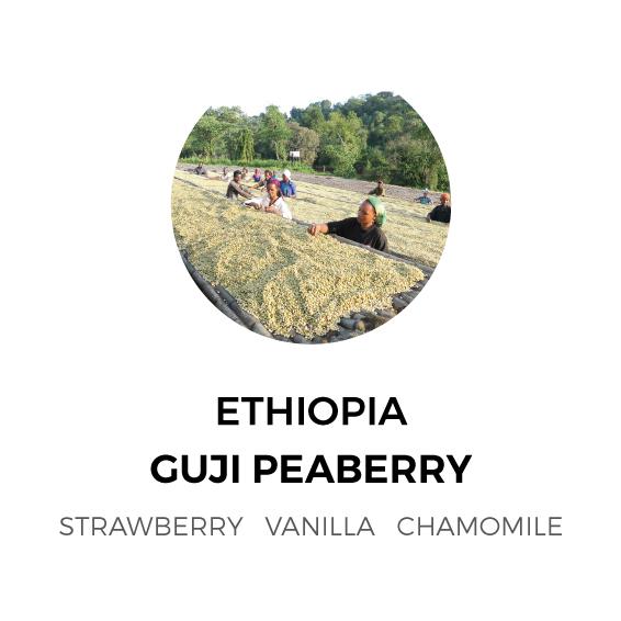 Ethiopia-Guji-Peaberry.jpg
