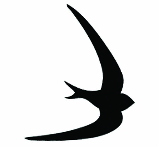 BLACK SWIFT PRESS
