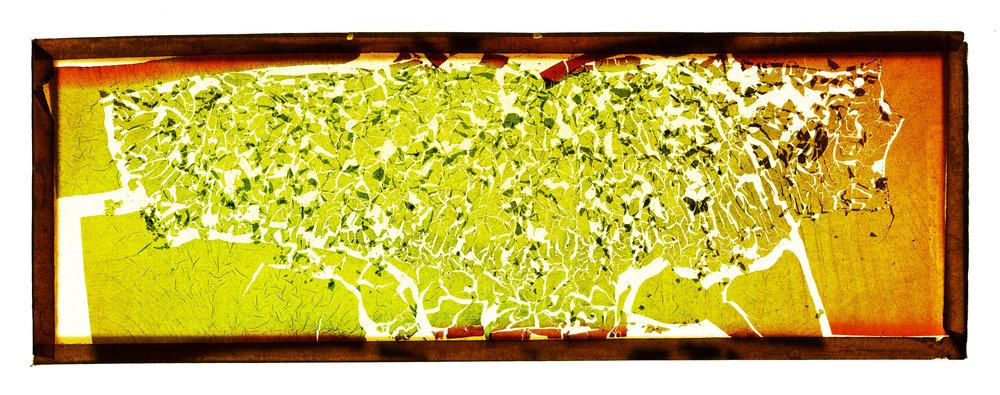 Green_Intense.jpg