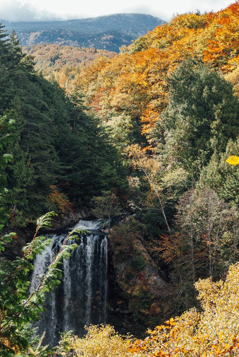 2015-10-13-Segakuien-Hike-05723-1200.jpg
