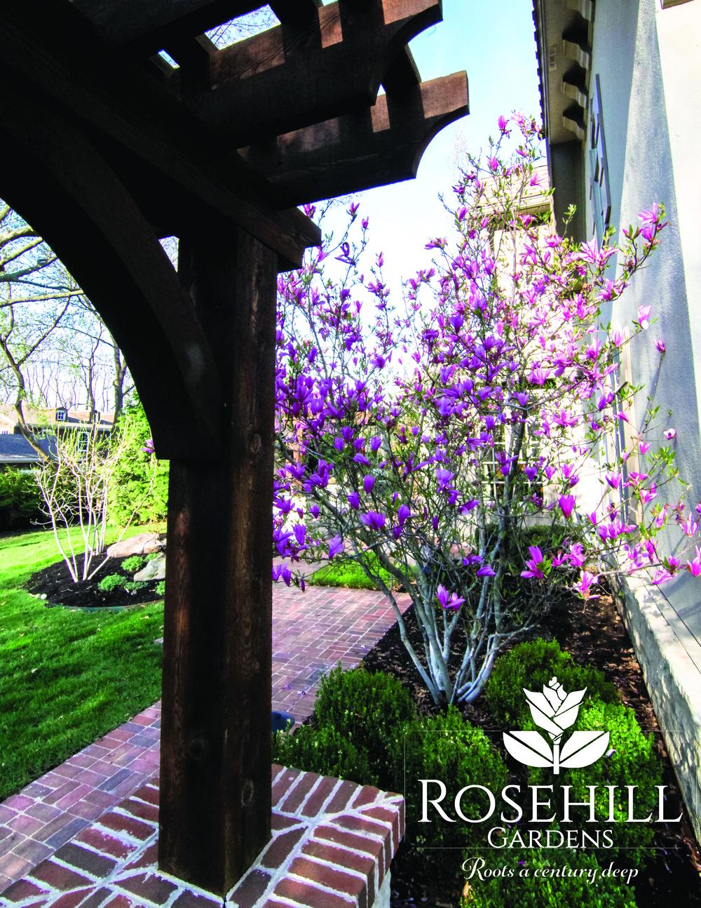 Rosehill Reprint10.jpg