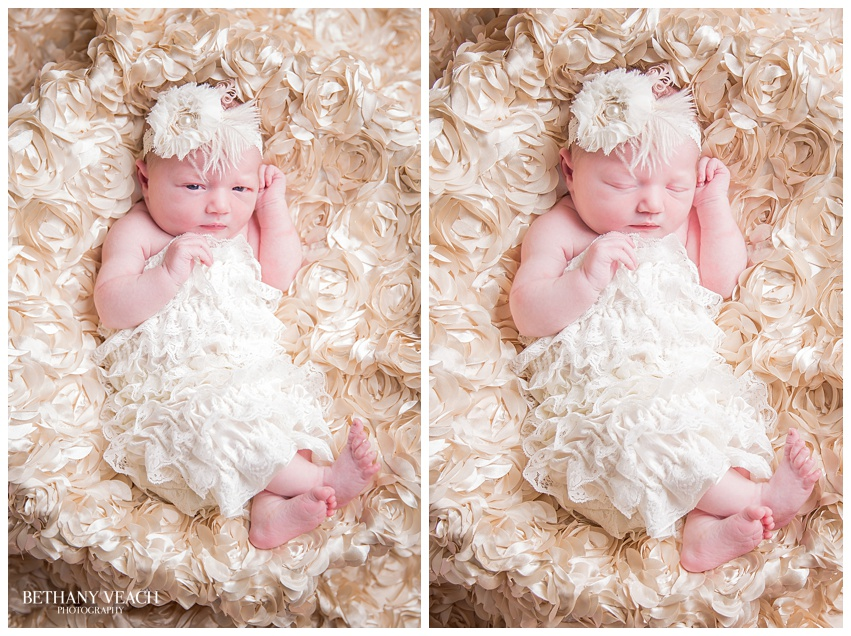 memphis newborn photographers