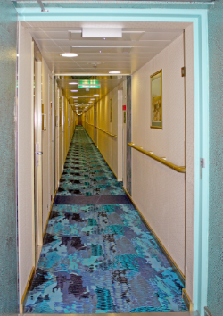How To Stay Safe On A Cruise Ship Next Trip Planners - How safe are cruise ships