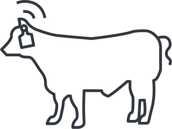 iot-cow.png