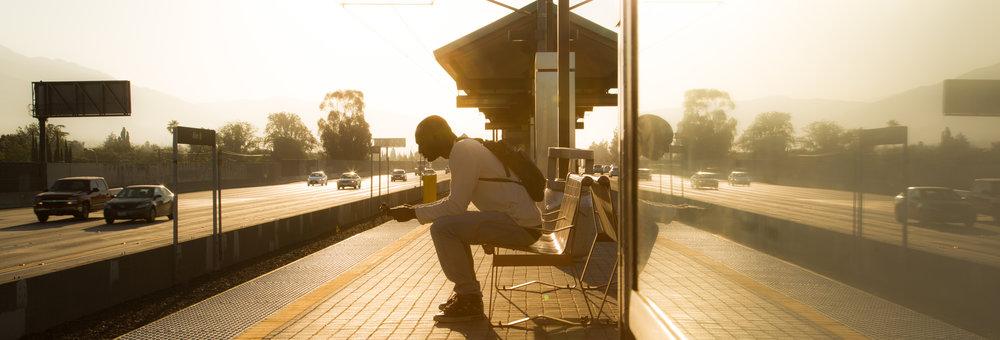Monty on bench.jpg