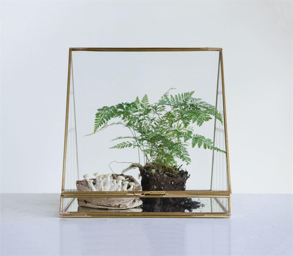 11-3:4%22L x 10%22W x 11-3:4%22H Brass & Glass Terrarium.jpg