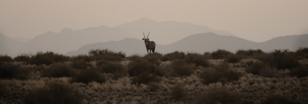namibia web_2.jpg