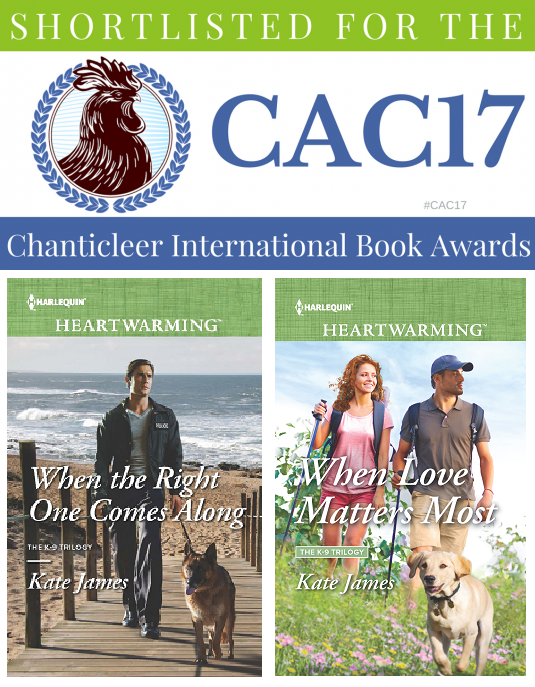CACAward-2017-1-540x272 twitter.png