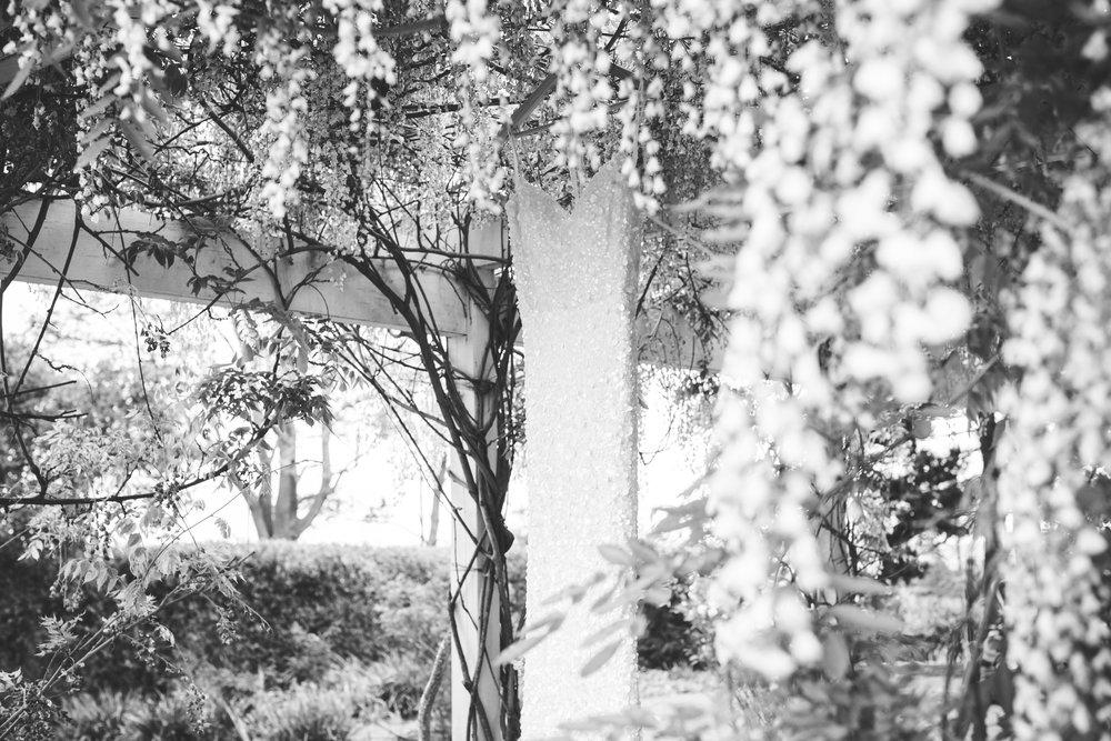 Ben_and_Laura-191.jpg
