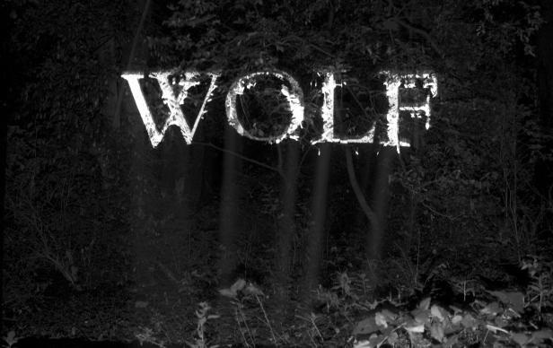 WillReynolds_wolf.jpg