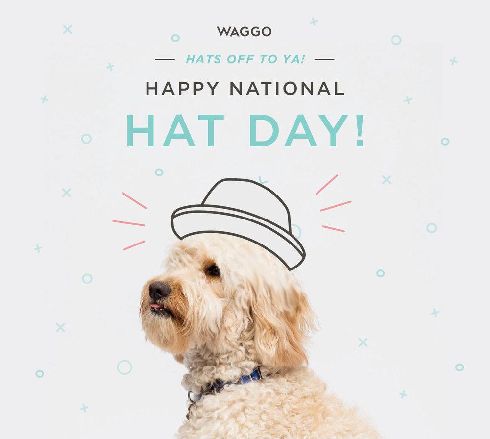 Waggo_Hat_Day_Illustration.jpg