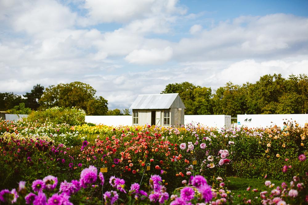 france_wedding_photography_brunch_garden_outdoors_destination-21.jpg