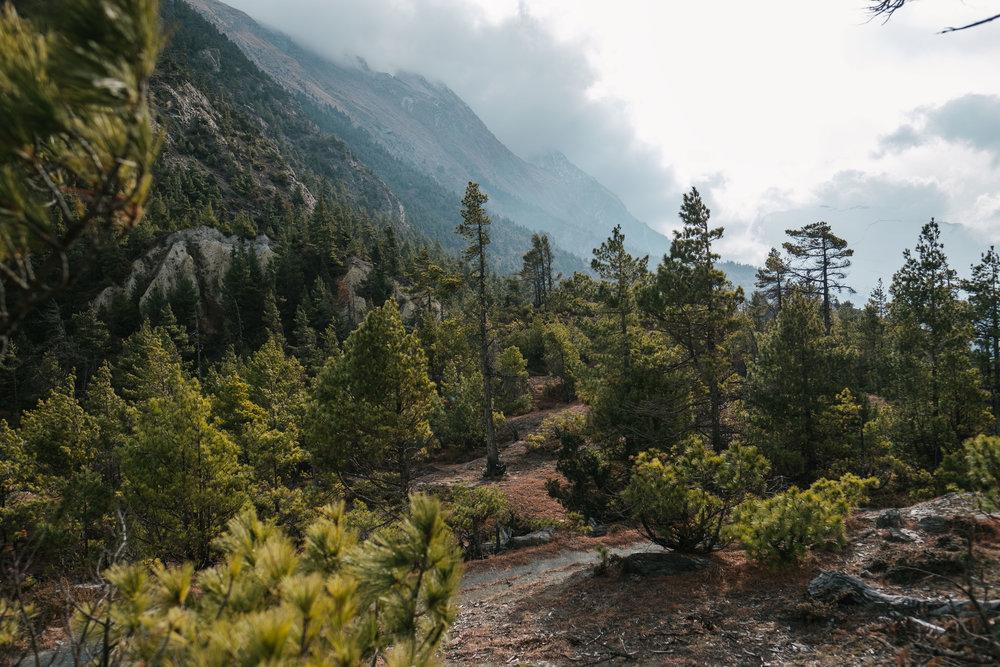 Nepal-177.jpg