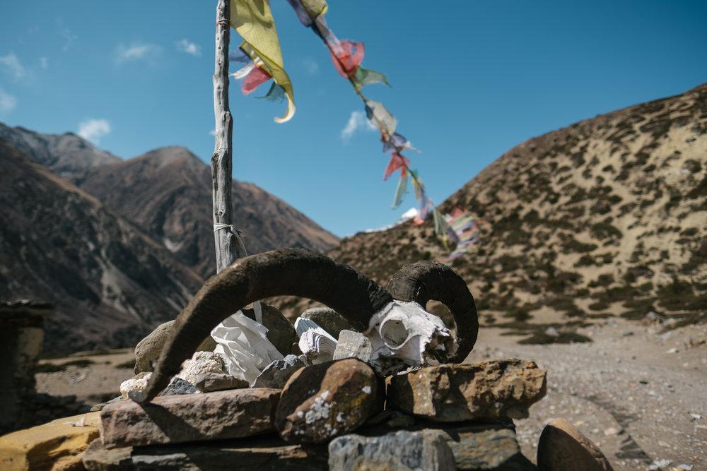 Nepal-277.jpg