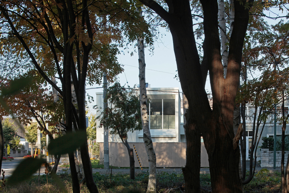 House in front of windbreak forest 2010
