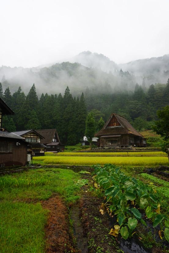 今回初めて訪れた「相倉集落」。こちらは23棟の合掌造り家屋が現存しており、一部は宿泊可能。冬に訪れてみたい。