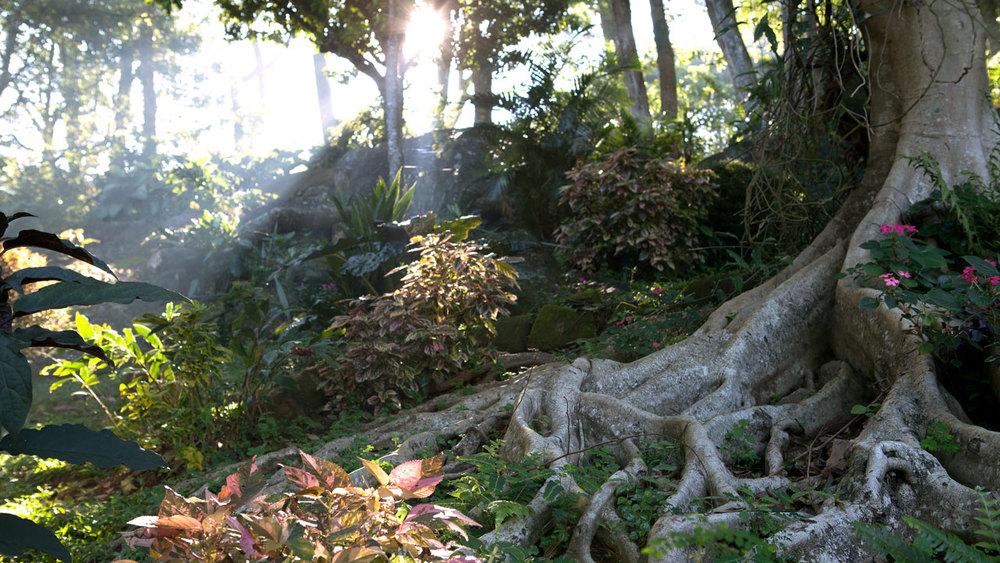 Amaya-Hills-environment.jpg