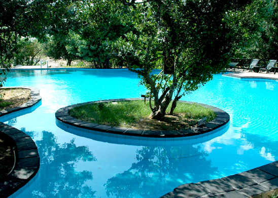 Chaya-wild-yala-sri-lanka-swimming-pool.jpg