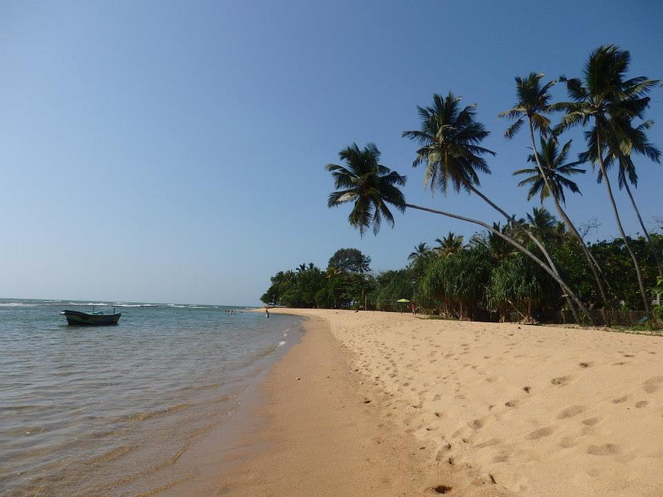 invite-to-paradise-customer-review-claire-simon-honeymoon-sri-lanka-beach.jpg
