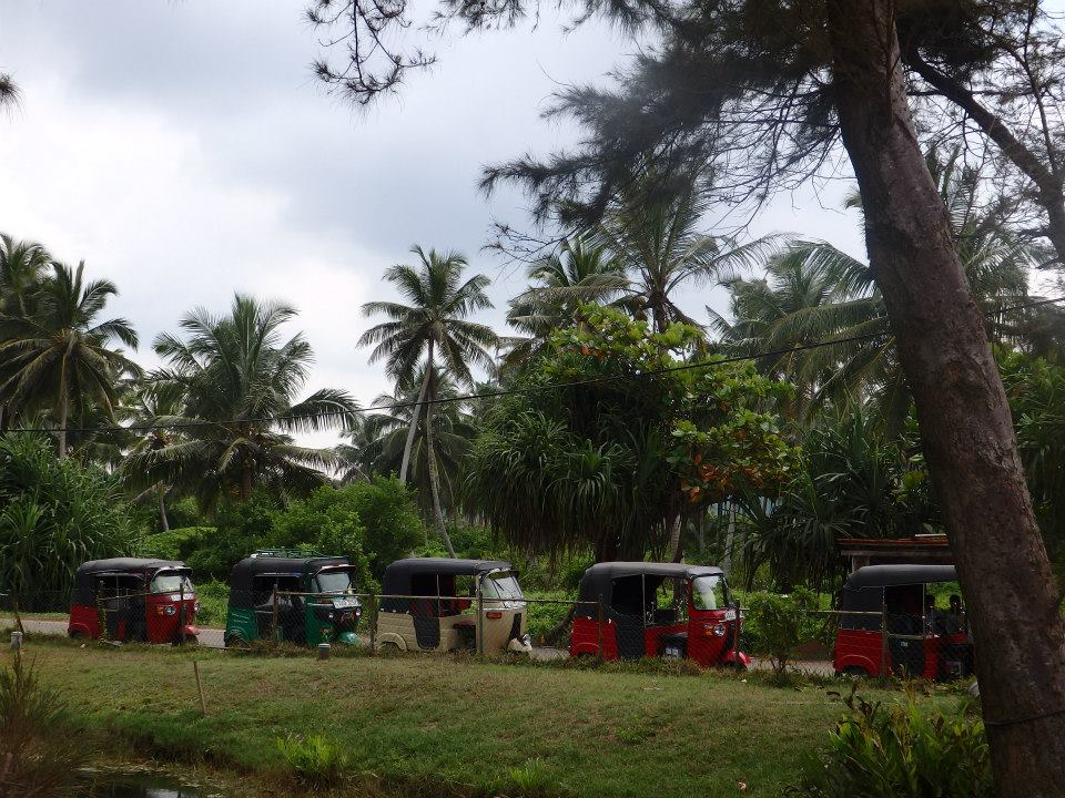 invite-to-paradise-customer-review-claire-simon-honeymoon-sri-lanka-tuk-tuk-2.jpg