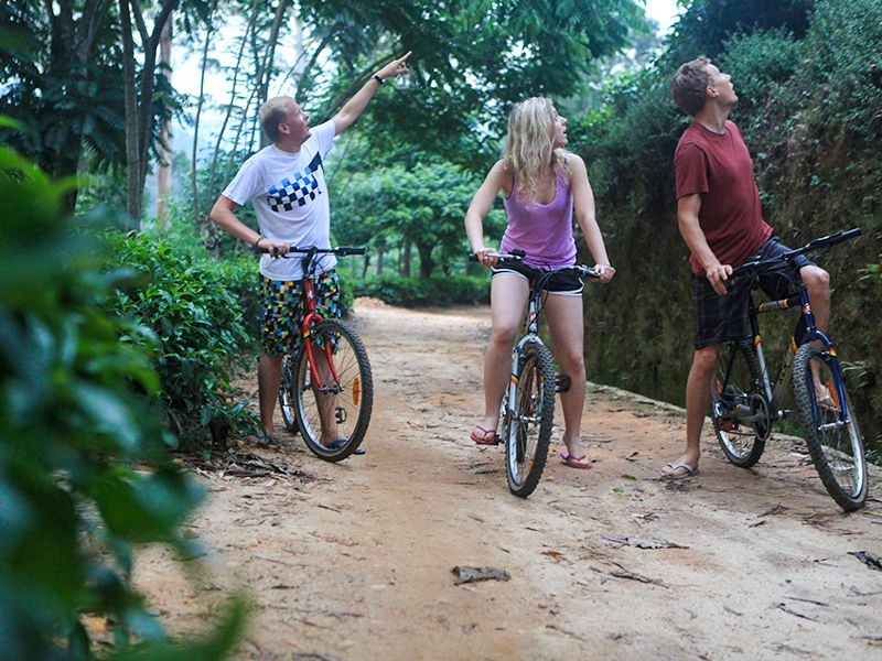 Invite-to-Paradise-Sri-Lanka-holiday-honeymoon-hotel-tea-plantation-boutique-the-secret-ella-bike-riding-1.jpg