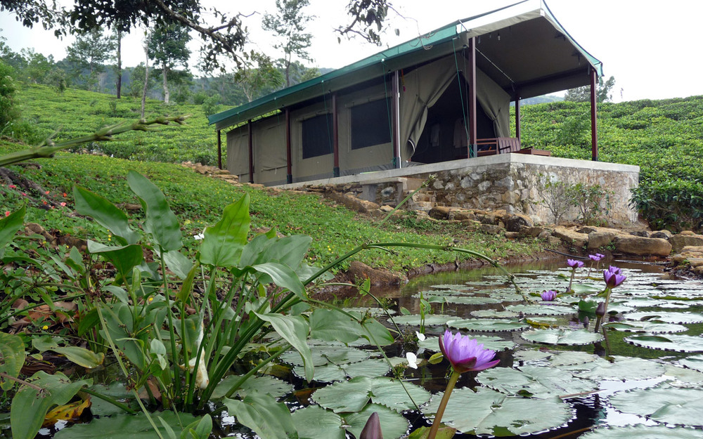 invite-to-paradise-sri-lanka-holiday-honeymoon-package-specialists-hotel-tea-plantation-boutique-madulkelle-tea-and-eco-lodge-kandy-room-4.jpg