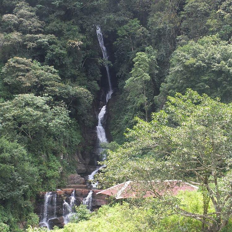 invite-to-paradise-sri-lanka-maldives-holiday-honeymoon-specialists-customer-feedback-edward-bethan-water-fall.PNG
