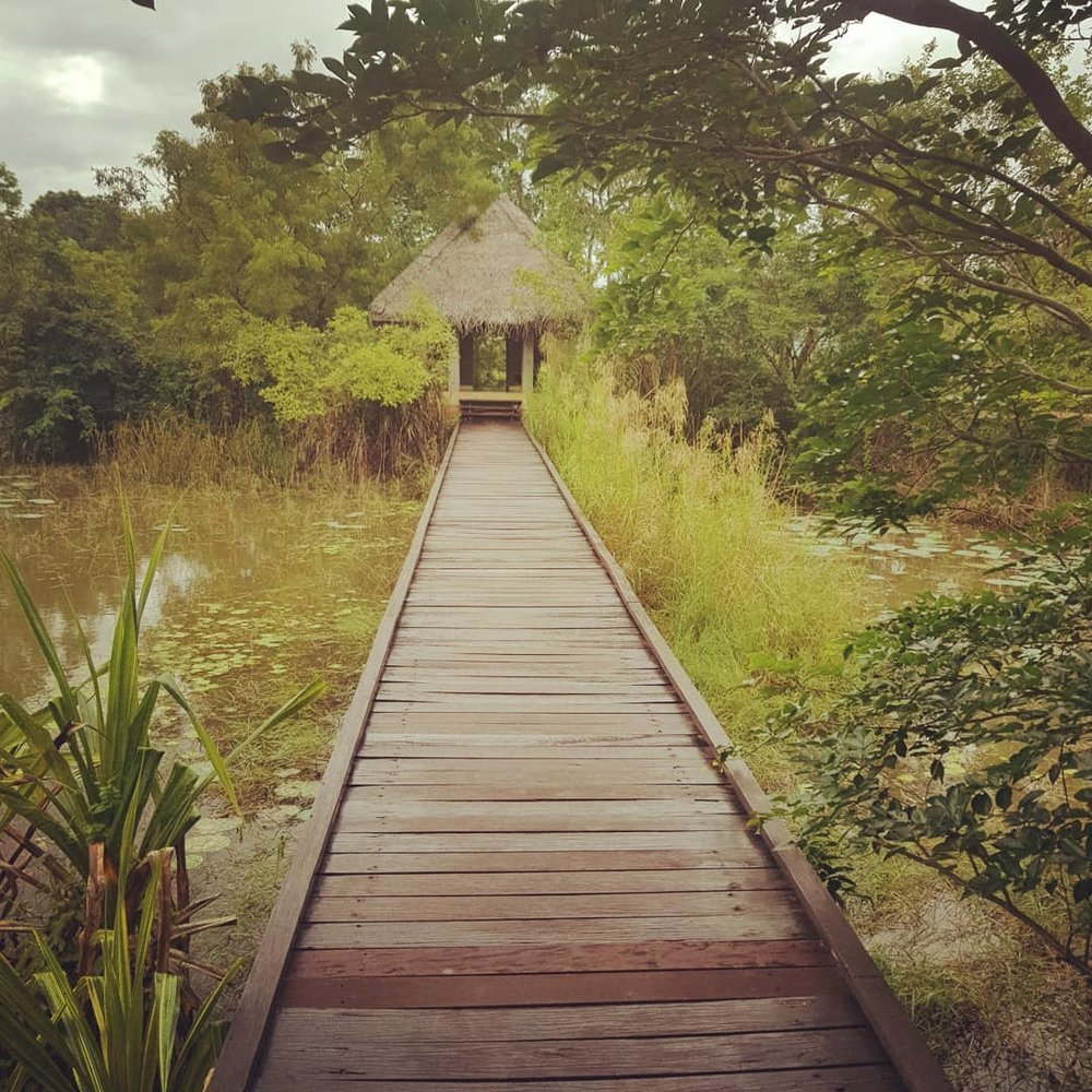invite-to-paradise-sri-lanka-honeymoon-specialists-customer-guest-feedback-Paul-Traies-Chloe-Rowley-jetwing-vil-uyana-spa-2.jpg