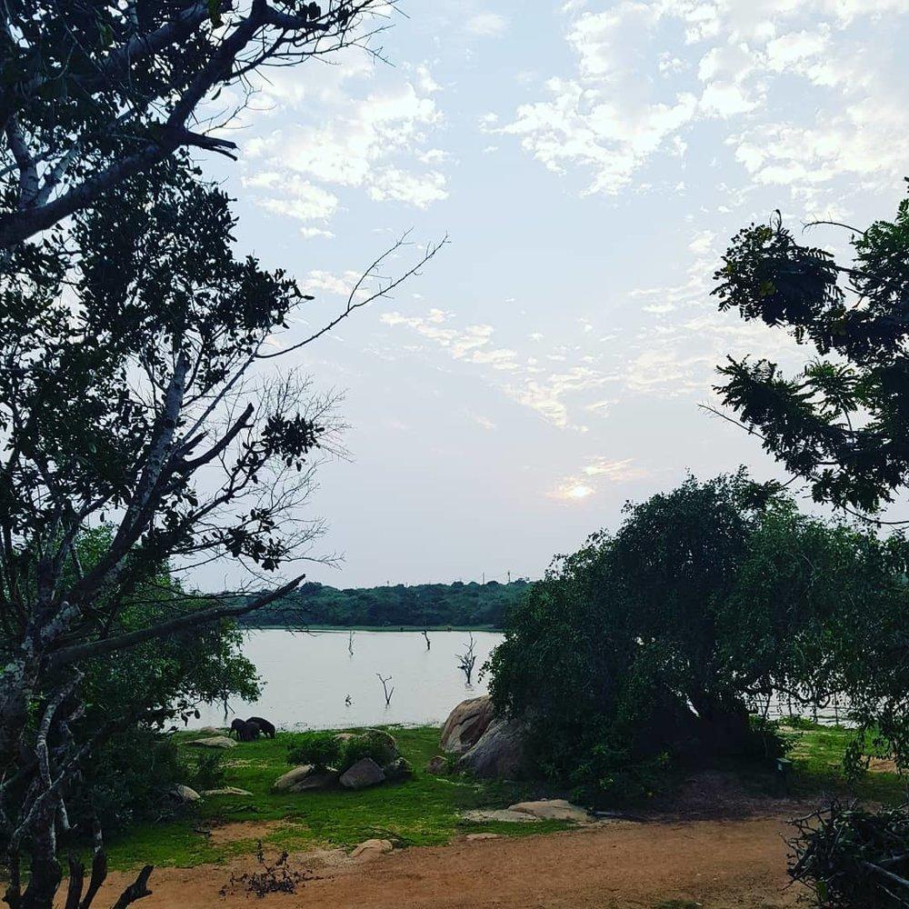 invite-to-paradise-sri-lanka-honeymoon-specialists-customer-guest-feedback-Paul-Traies-Chloe-Rowley-yala-cinnamon-wild-lake.jpg