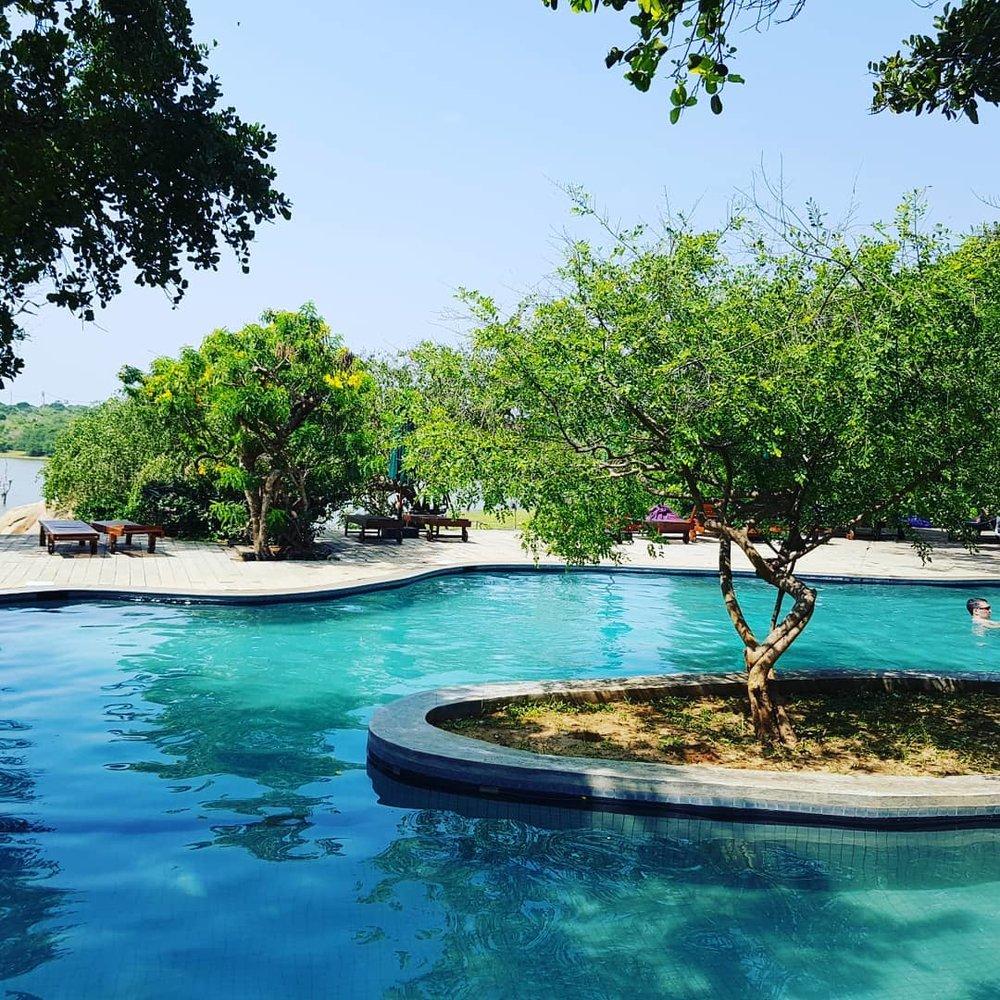invite-to-paradise-sri-lanka-honeymoon-specialists-customer-guest-feedback-Paul-Traies-Chloe-Rowley-yala-cinnamon-wild-pool.jpg