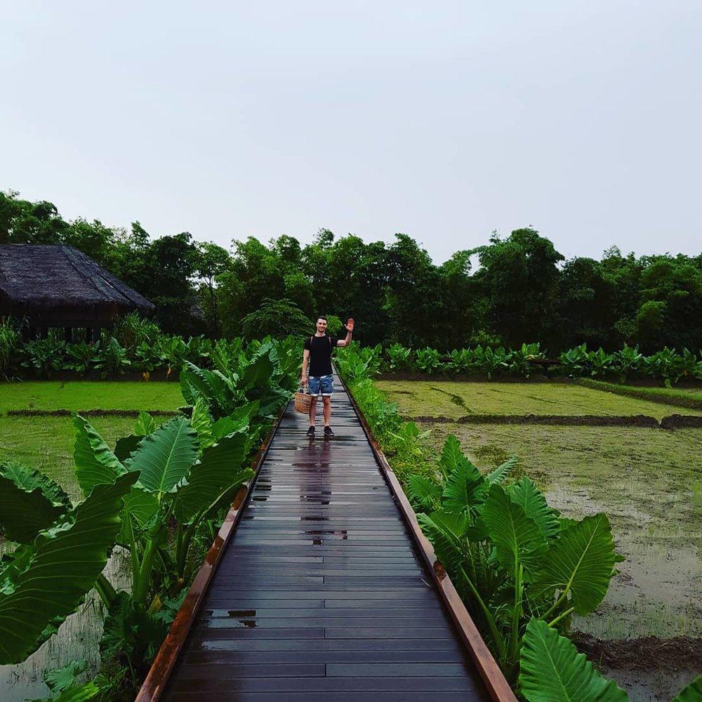 invite-to-paradise-sri-lanka-honeymoon-specialists-customer-guest-feedback-Paul-Traies-Chloe-Rowley-jetwing-vil-uyana-paddy-dwelling-2.jpg