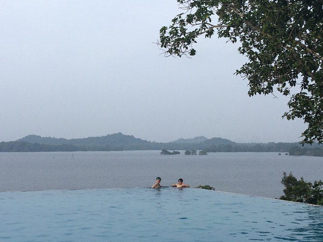 invite-to-paradise-sri-lanka-family-holiday-specialists-customer-feedback-pickering-kandalama-infinity-pool.jpeg