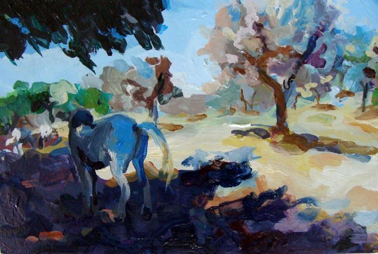 tuscan horses2.jpg