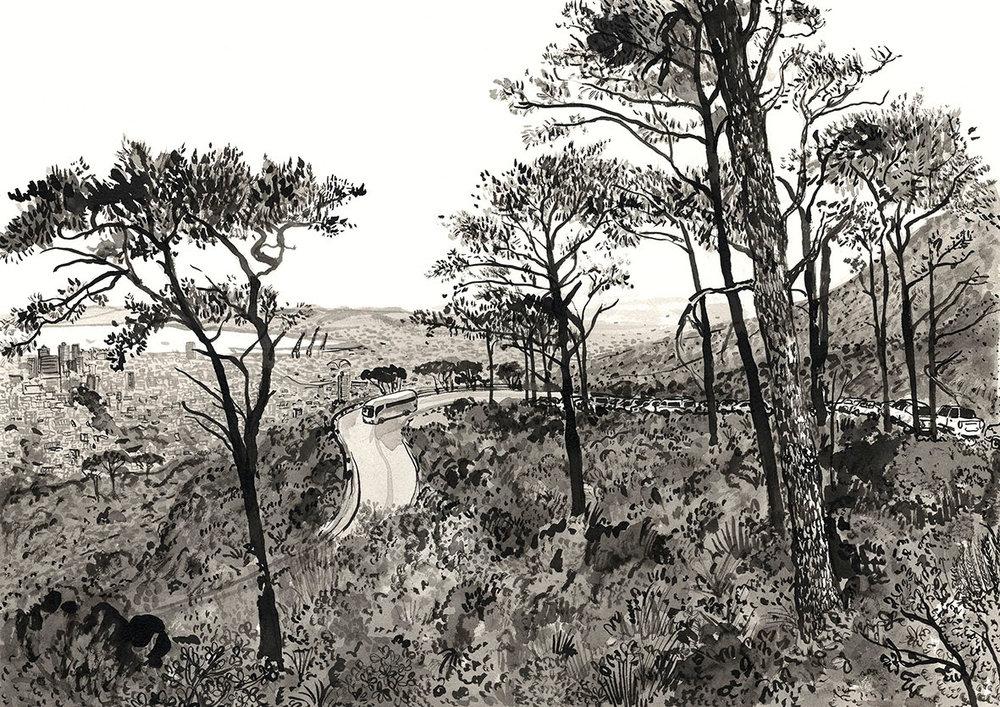 # 049 Tafelberg Road