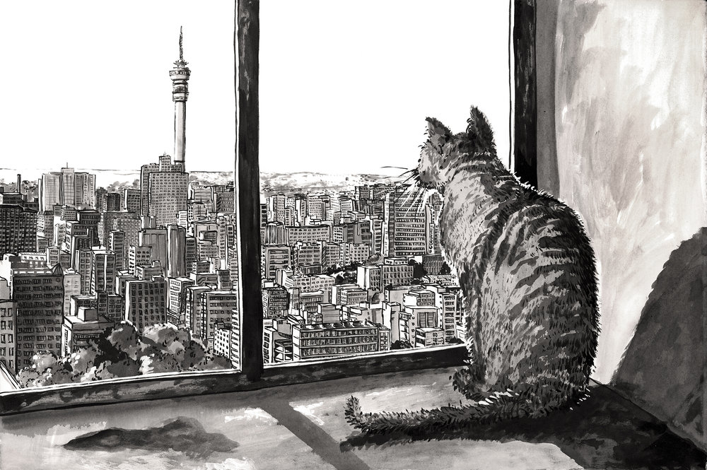 JHB #01 Hillbrow Pussy with a view