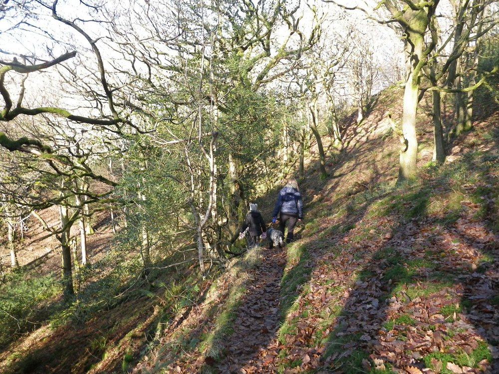 a woman and child walking through woodland on a public footpath - chris ensoll mountain guide