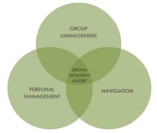 blog post how to pass your ml assessment balls diagram.JPG