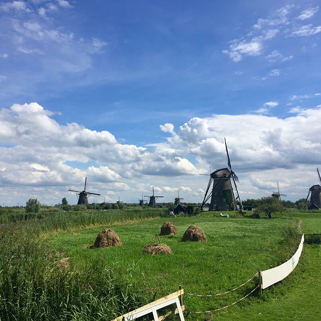 A day at Kinderdijk